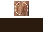BFV footer logo